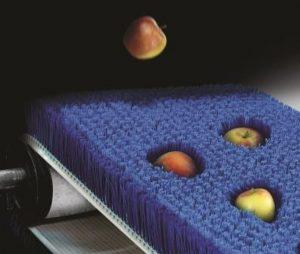 Transportbürsten für Äpfel